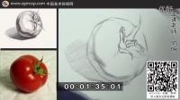 【中国美术视频网】何明静物素描 教学视频 02西红柿