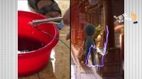尿在220伏交流电上会发生什么?