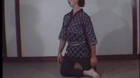 短刀术Tanto jutsu 枝垂柳流合气柔术(Yanagi ryu)日本古武术