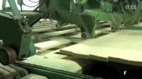 SCA Tunadal Drysorting张金菊