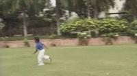 347 Cricket (Indian)