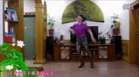 霞彩飞扬广场舞——我是女汉子(DJ)       编舞:风中天使_标清