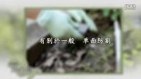 【环保再生纺织品】防割手套