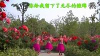 南阳和平广场舞系列--这条街(团队版)