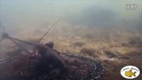 在水里放下捕虾笼后,摄像机记录下来令人惊奇的一幕。