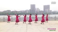 刘峰广场舞《翻身农奴把歌唱》背身