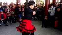 天津水上公园吉特巴·经典舞蹈收藏1