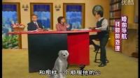 婚前导航-第09集  李长安冯志梅夫妇婚姻家庭生活讲道集