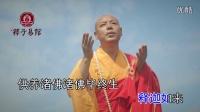 倾听心灵的梵音《伴我行》大悲咒 佛教音乐歌曲MV佛歌视频
