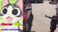 搞笑合集【三】猫儿整理