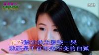 白狐 - 陈瑞KTV伴唱版