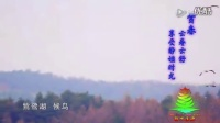 视频辽源:大美辽源【春色满源】!_标清