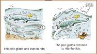 03 A Pike Glides