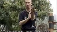 张保系咏春拳系统教程(3)   麦耀明讲解