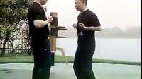 张保系咏春拳系统教程(1)   麦耀明讲解
