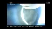 2010 06 上海纪实频道 广告和节目预告1