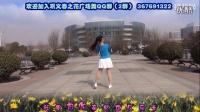 巩义春之花广场舞原创舞蹈《掌心上的时光》背面