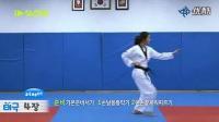 韩国跆拳道品势教学-太极四章_标清
