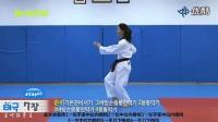 韩国跆拳道品势教学-太极七章_标清