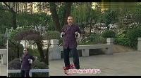 三十天学会咏春拳教程[1]