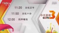 CCTV3 ID3 (收视指南)
