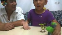 【傲仔小天地】狗狗救援队-小灰 趣味玩具拼装变形,亲子乐园,亲子游戏