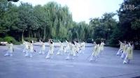 石家庄石太公园太极队42剑演示