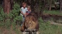 两个小孩带只狮子在河边玩,一只黑熊突然出现,多亏了那头狮子
