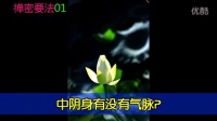 南怀瑾  禅密要法 01 白骨观 字幕版_高清