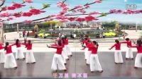 贵州遵义淑韵舞蹈队  桃花谣
