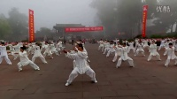 2016京津冀传统武术交流大会 陈氏太极拳集体表演