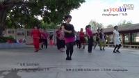 zhanghongaaa 广场舞 真的没骗你 原创