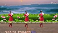 安阳金东姐妹广场舞《洗衣歌》编舞凤凰六哥演示蓝天白云.