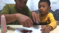 [傲仔小天地]LEGO亲子手工制作第4期树叶手工制作小金鱼,亲子乐园,亲子游戏