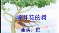 一颗开花的树【诵读:俊】