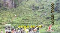 电视台《国庆七天户外游》の7:利川古河床