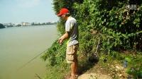 【淡水钓鱼野钓】探钓流溪河(三) 竹林深处钓鱼秘境