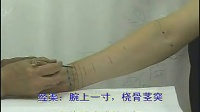 耿恩广《针灸取穴纲要 · 前臂部和肘部的穴位》03_标清_标清