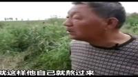 马蓉居然这样说,再看看王宝强爸妈的讲诉,我真是心疼宝宝-今日头条