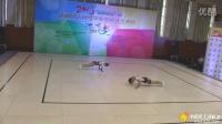 2016 全国健美操冠军赛(衢州) (17)