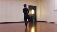 传统杨氏太极拳85式-罗子真-子真太极