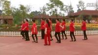澄江广场舞 化石广场舞队《粉红色的回忆》