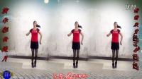 建群村广场舞《西藏情歌》单人水兵舞:演示制作:彩云追月 编舞:一莲 2016年最新广场舞带歌词