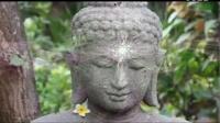 覺醒字幕組:內在與外在的聯繫 第一部分 Akasha