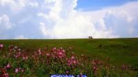 基督教歌曲-草原的赞美