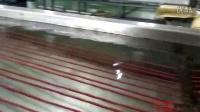 广东线材TPE生产线工作全过程演示视频