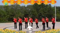 沈北新区喜洋洋广场舞《山里红》8人