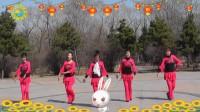 沈北新区喜洋洋广场舞《美丽中国年》-5个人