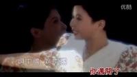 董文华-春天的故事