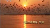 朝闻天下 20120713 广告2